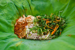 Thai Rice with Spicy Dressing Royalty Free Stock Photo