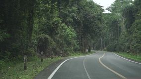 Thai rural jungle road. First person view. Clip stock video