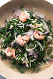 Thai salad mix with Vegetable fern and shrimp Stock Images