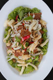 Thai salad. Salad mixed fish pork grill cashews and onion Royalty Free Stock Image