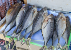 Thai salted mackerel Stock Photo