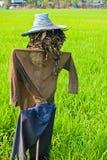 thai scarecrow Royalty Free Stock Image