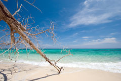 Thai sea : White sand beach and blue sky Stock Images