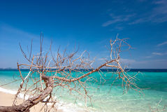 Thai sea : White sand beach and blue sky Royalty Free Stock Photography