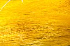 Thai silk fabric Stock Photo