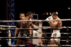 thai slagsmål Royaltyfri Bild