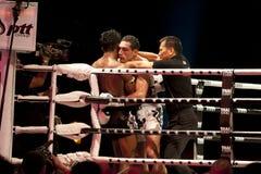 thai slagsmål Arkivfoto