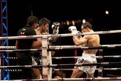 thai slagsmål Royaltyfria Foton