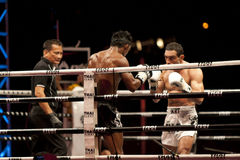 thai slagsmål Arkivbilder