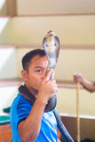 Thai snake tamer holds a cobra in his hand. Stock Images