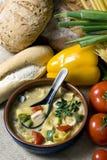 thai soup 005 Arkivfoton