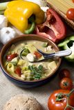 Thai Soup 006. Spicy homemade thai soup with chicken and fresh vegetables Stock Photography
