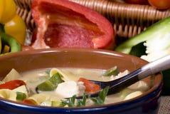 thai soup 007 Arkivfoto