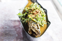 Thai sour curry with snake headed fish Royalty Free Stock Photo