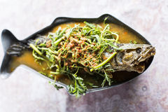 Thai sour curry with snake headed fish Royalty Free Stock Image