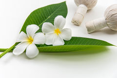 Thai Spa massage compress balls, herbal ball and treatment  spa, relax and healthy care with white flower, Thailand. Healthy Concept. select focus Royalty Free Stock Images
