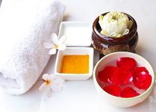 Thai spa massage. Royalty Free Stock Photo