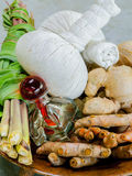 Thai spa therapy ingredients. Stock Images