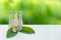 Thai Spa Treatments and massage flower on wooden white with green nature background.  banner. lots of copy space. Stock Photography