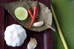 Thai spices Royalty Free Stock Photo