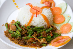 Thai spicy curry Royalty Free Stock Images
