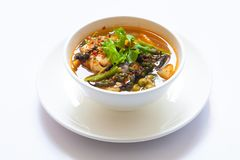 Thai fish spicy curry with white bolw Stock Photos