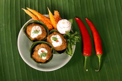 Thai spicy food. A Thai spicy food with curry Royalty Free Stock Images