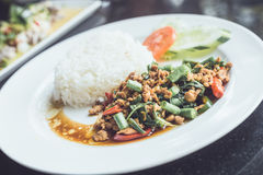 Thai spicy food basil chicken fried rice recipe (Krapao Gai) Stock Photography