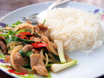 Thai spicy food, Fried pork. Royalty Free Stock Photos