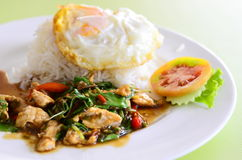 Thai spicy food, (kapao moo). Stock Image