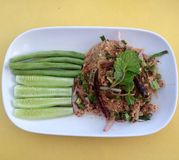 Thai spicy mince pork. With glass noodles or Larb Moo serve with fresh vegetables; cucumber and pea Royalty Free Stock Photo