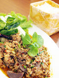 Thai Spicy minced meat salad Royalty Free Stock Photography