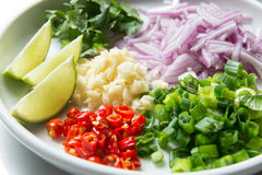 Thai spicy salad ingredient. A close-up look of  chopped up red chili, garlic, scallion, red onion, cilantro and lime which are key ingredient used  in preparing Stock Photography
