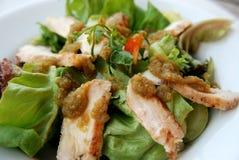 Thai spicy salad Royalty Free Stock Photos