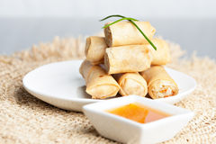 Thai Spring Roll Appetizers Stock Image