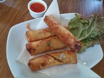 Thai spring roll Royalty Free Stock Image