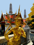 Thai statue in temple. A golden statue in a temple in thailand Stock Photos