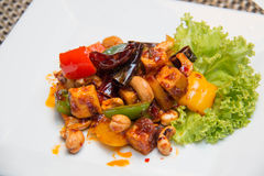 Thai Stir Fry spices Tofu with Cashew Nuts stock images