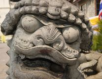 Thai Stone Temple Lion statue face in close up. Chinese style temple lion guardian in Bangkok shows its fangs stock image