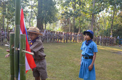Thai student scout camp Stock Images