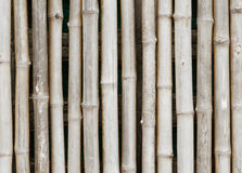 Thai style bamboo fence. And background Royalty Free Stock Photography