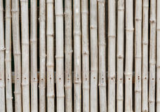Thai style bamboo fence. And background Royalty Free Stock Image