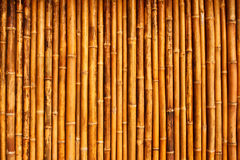 Thai style bamboo wall Stock Photography