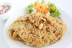 Thai style crispy deep fried catfish salad. Served with mango sweet & sour sauce on white plate background Stock Photography
