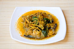 Thai style fish curry Stock Images