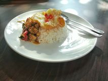 Thai style food, two-entree plate. 2-Entree Plate Royalty Free Stock Images