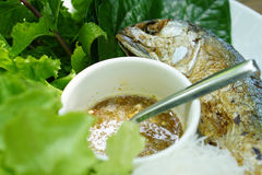 Thai style fried mackerel fish serving with fresh salad and spic Stock Photos