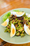 Thai style hot and spicy salad royalty free stock image