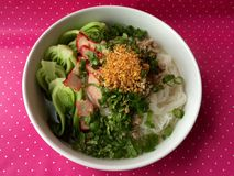 Thai Style Rice Noodles with Roasted RedPork. And bokchoy Royalty Free Stock Images