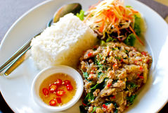 Thai style spicy fried pork with rice Royalty Free Stock Photography